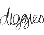Diggies Cafe