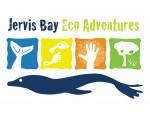 Dolphin Wild Cruises Logo