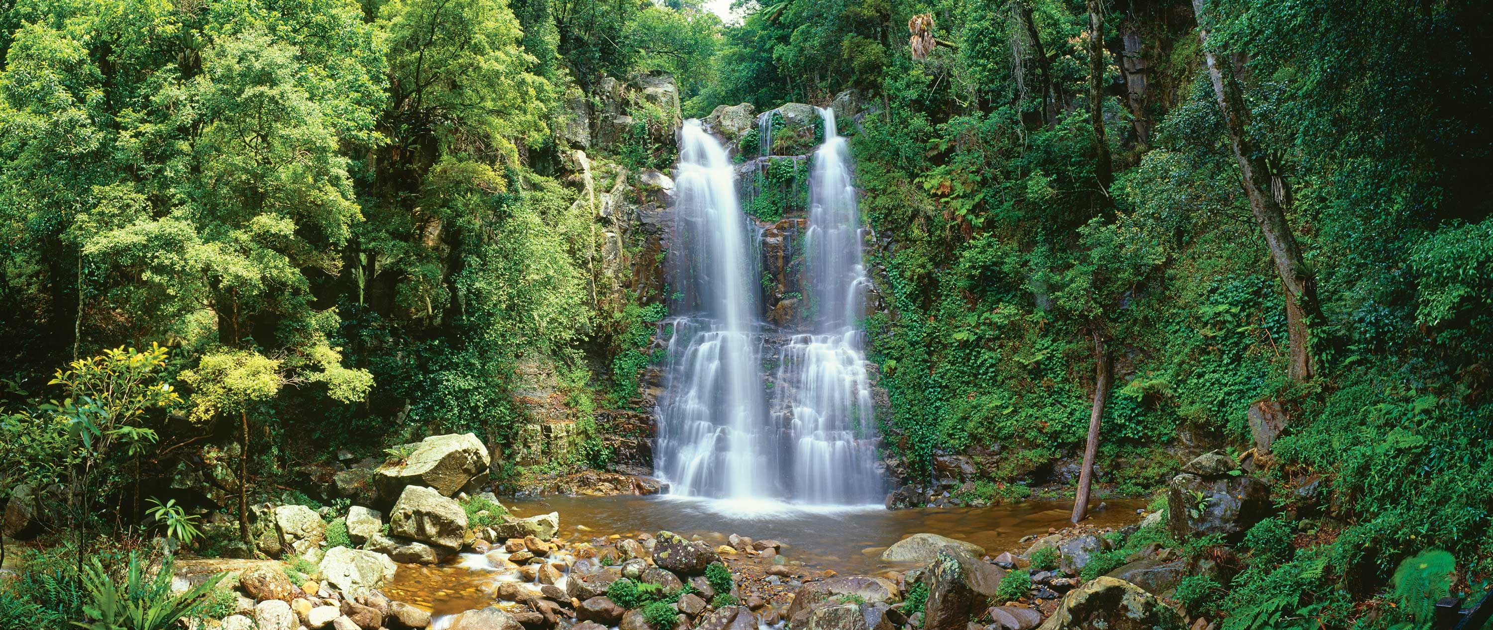 Minnamurra Rainforest waterfall